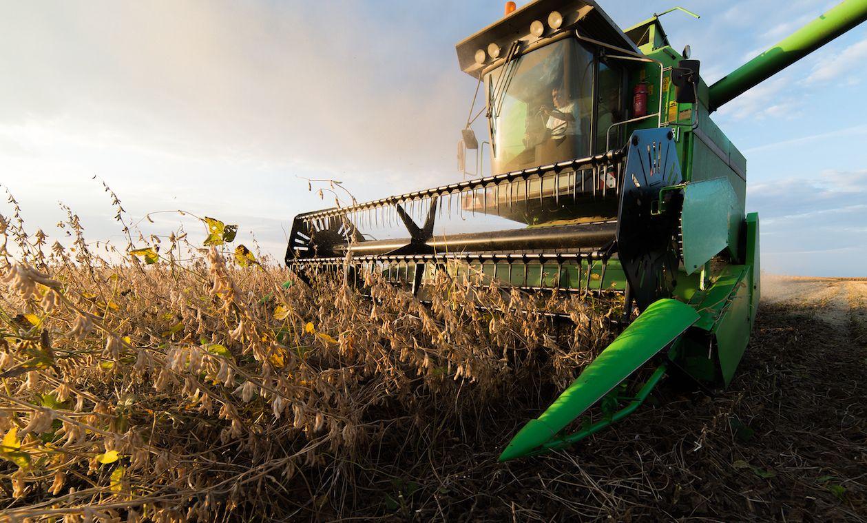 International Agribusiness Programme Evaluation