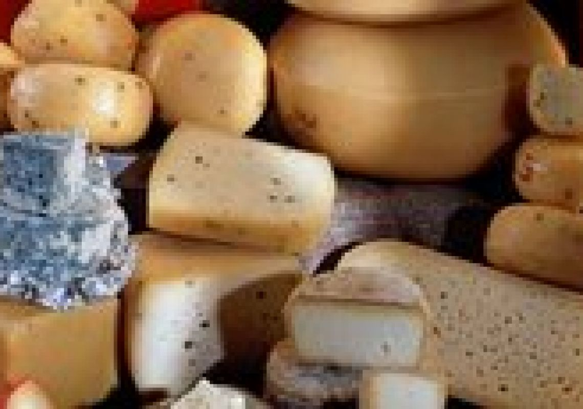 New report available: Cheese Technology Landscapes